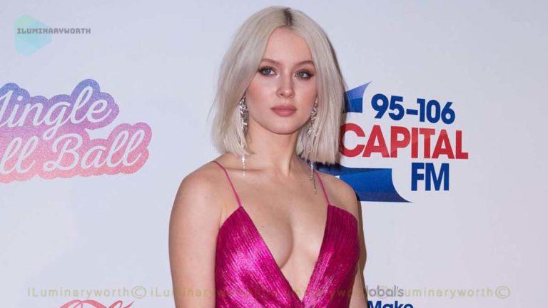 Singer Zara Larsson Net Worth 2020 – Earnings From Music Albums