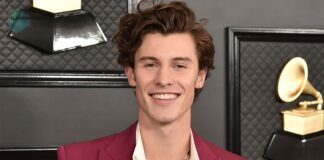 Shawn Mendes net worth