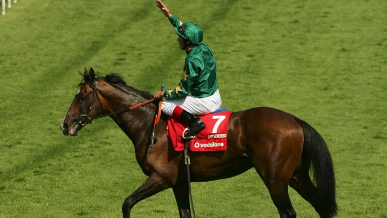 Three Of The Jockeys With The Highest Total Earnings